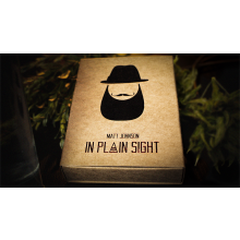In Plain Sight von Matt Johnson